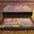 Battletoads (NES) (NTSC-U) (б/у) фото-2