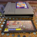 Disney's DuckTales (NES) (NTSC-U) (б/у) фото-2