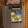 Teenage Mutant Ninja Turtles (NES) (NTSC-U) (б/у) фото-1
