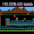 Ninja Gaiden II: The Dark Sword of Chaos (NES) скриншот-2