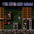 Ninja Gaiden III: The Ancient Ship of Doom (NES) скриншот-5