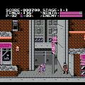 Ninja Gaiden (NES) скриншот-2