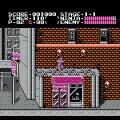 Ninja Gaiden (NES) скриншот-3