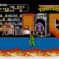 Teenage Mutant Ninja Turtles II: The Arcade Game (NES) скриншот-4