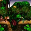 Donkey Kong Country (б/у) для Super Nintendo Entertainment System