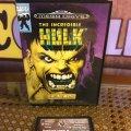 The Incredible Hulk (Sega Mega Drive) (PAL) (б/у) фото-1
