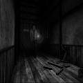 Project Zero (PS2) скриншот-2